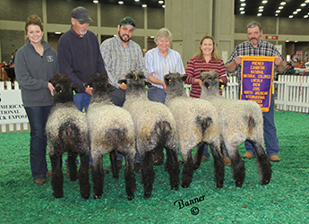 1st Flock 2015 NAILE