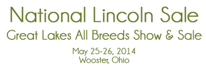 National Lincoln Sale