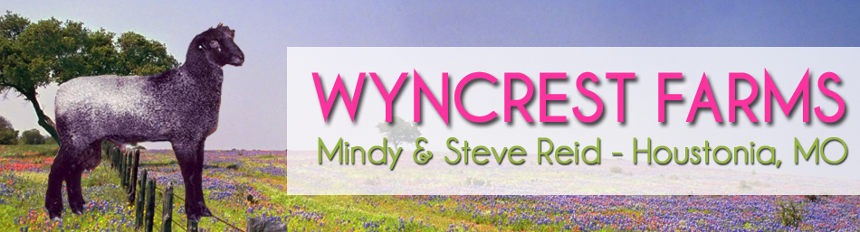 Wyncrest Farms - Mindy Gibson